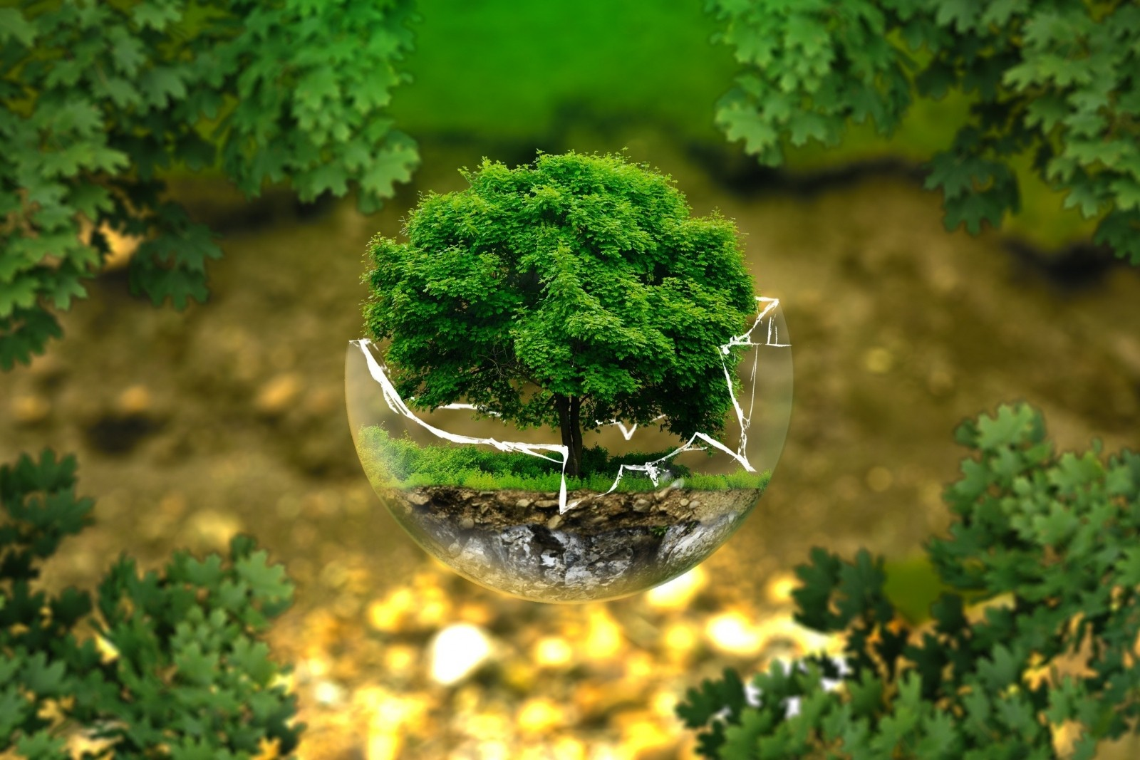 nettoyage industriel écologique