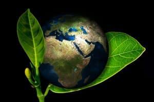 environnement et domotique