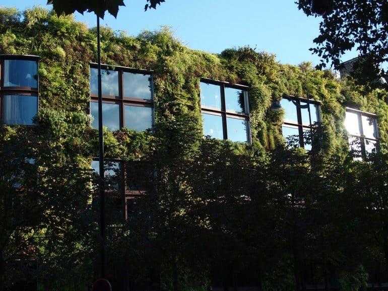 Un bâtiment avec un mur végétalisé